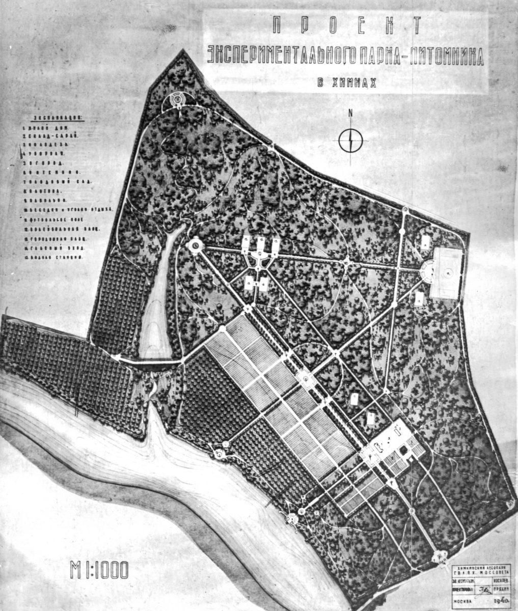 План экспериментального парка-питомника в Химках (Порозов, 1940 год) (ГАРФ Ф. А404. Оп. 2. Д. 69. Л.42а)